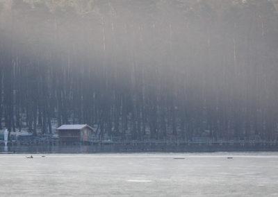 Hütte am Stechlinsee im Winter